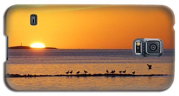 Galaxy S5 Case featuring the photograph Agua Verde Sunrise by Anne Mott
