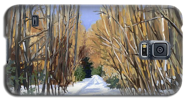 Galaxy S5 Case featuring the painting Airline Trail In Winter by Alecia Underhill