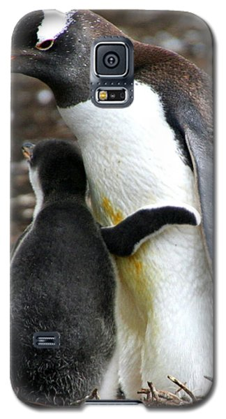All I Need Is A Hug Galaxy S5 Case by Laurel Talabere