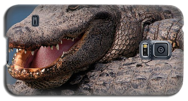 Galaxy S5 Case featuring the photograph Alligator Smile by Art Whitton