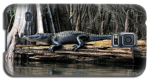 Alligator Sunning Galaxy S5 Case