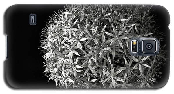 Allium In Black And White Galaxy S5 Case by Endre Balogh