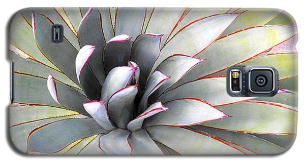 Galaxy S5 Case featuring the photograph Aloe by Rebecca Margraf