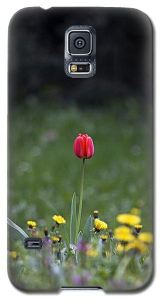 Galaxy S5 Case featuring the photograph Alone by Raffaella Lunelli