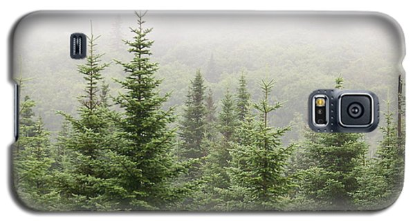 Galaxy S5 Case featuring the photograph Alpine Trees by Robin Regan