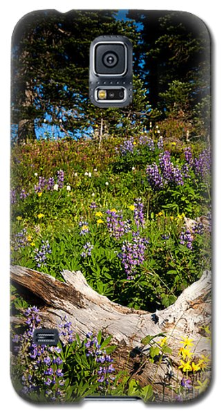 Galaxy S5 Case featuring the photograph Alpine Wildflower Meadow by Karen Lee Ensley