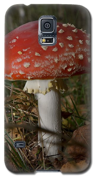Amanita Muscaria Galaxy S5 Case