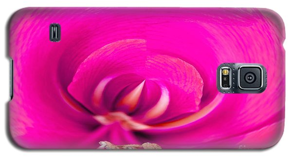 Galaxy S5 Case featuring the photograph Amaryliss Close-up by Les Palenik