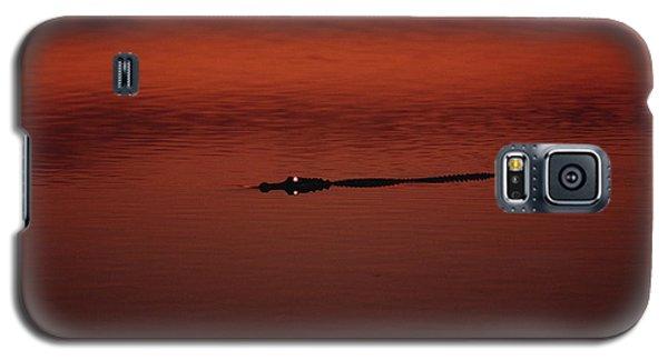 American Alligator Alligator Galaxy S5 Case by Konrad Wothe