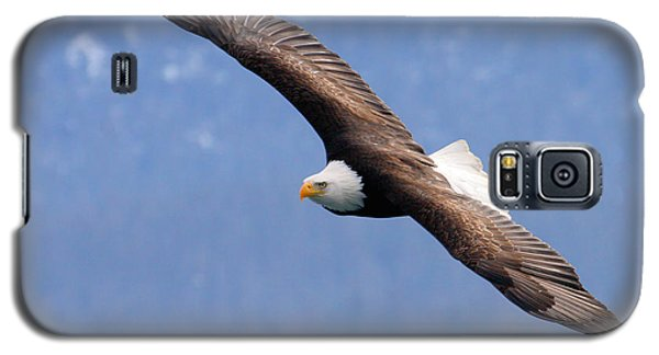 Galaxy S5 Case featuring the photograph American Bald Eagle by Doug Lloyd