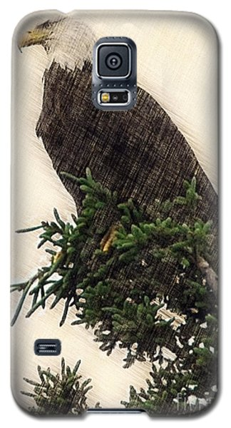 American Bald Eagle In Tree Galaxy S5 Case