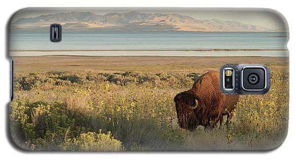 Galaxy S5 Case featuring the photograph American Bison Antelope Island Utah by Doug Herr