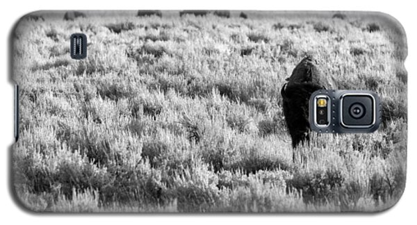 American Bison In Black And White Galaxy S5 Case by Sebastian Musial