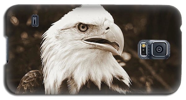 American Eagle Galaxy S5 Case