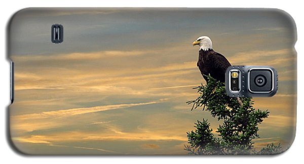 Galaxy S5 Case featuring the photograph American Eagle Sunset by Dan Friend
