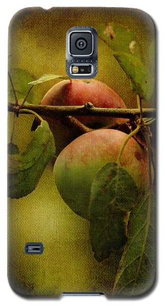 An Apple A Day Galaxy S5 Case by Kathleen Holley