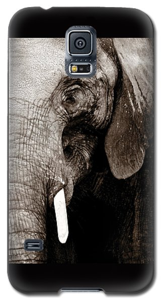 Ancient Face Galaxy S5 Case