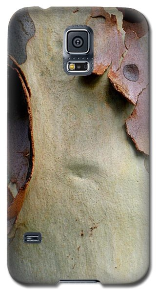 And God Made Trees Galaxy S5 Case