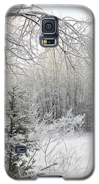 And More Snow Galaxy S5 Case