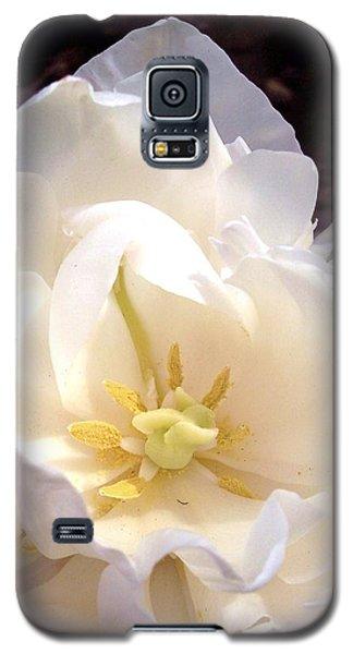 Angelic Tulip Galaxy S5 Case by Rebecca Overton