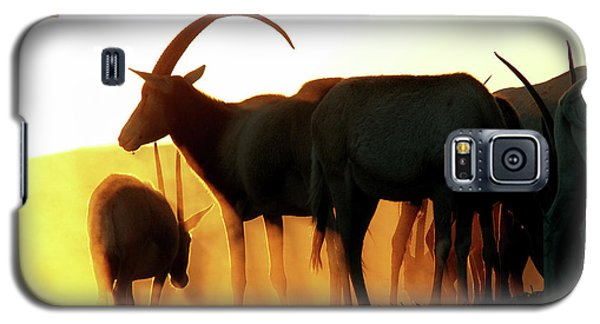 Galaxy S5 Case featuring the photograph Antelope At Sunset by Arik Baltinester