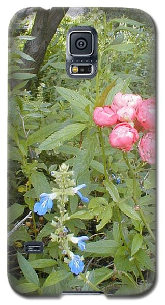 Galaxy S5 Case featuring the photograph Antique Rose by Vonda Lawson-Rosa