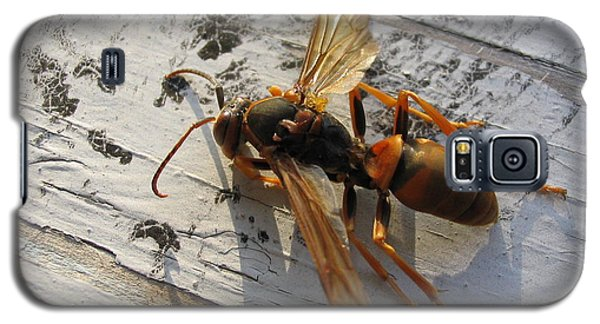 Galaxy S5 Case featuring the photograph Apache Red Wasp by Mark Robbins