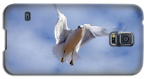 Galaxy S5 Case featuring the photograph Applying Brakes In Flight by Clayton Bruster