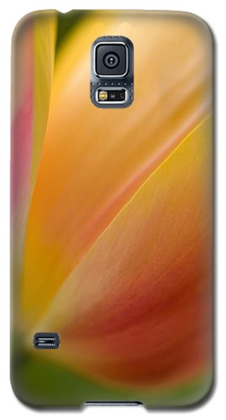 April Grace Galaxy S5 Case by Mike Reid