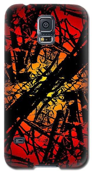 Arbor Sun Galaxy S5 Case by Tim Allen