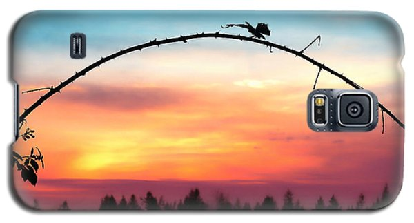 Arch Silhouette Framing Sunset Galaxy S5 Case by Tracie Kaska