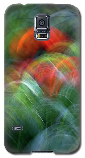 Galaxy S5 Case featuring the photograph Arches Of Flowers by Raffaella Lunelli