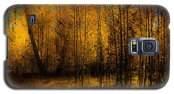 Galaxy S5 Case featuring the photograph Aspen Glow by Randy Wood
