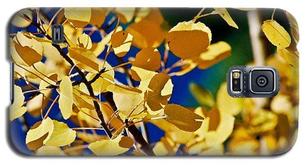 Aspen Gold Medallions Galaxy S5 Case