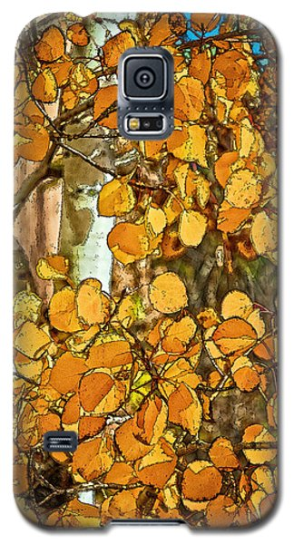 Aspens Gold Galaxy S5 Case