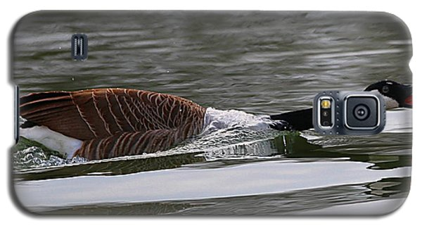 Galaxy S5 Case featuring the photograph Attack Of The Canadian Geese by Elizabeth Winter