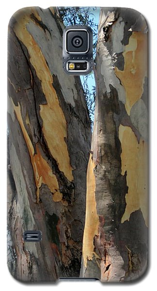 Galaxy S5 Case featuring the photograph Australian Tree by Roberto Gagliardi