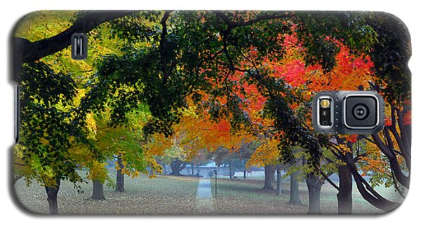 Autumn Canopy Galaxy S5 Case by Lisa Phillips