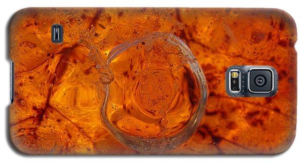 Autumn Circle Galaxy S5 Case