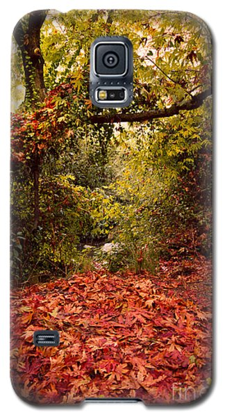 Galaxy S5 Case featuring the photograph Autumn Dreams by Nadya Ost