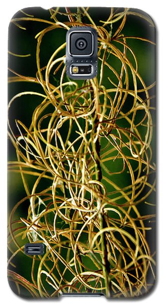 Galaxy S5 Case featuring the photograph Autumn Fireweed by Albert Seger