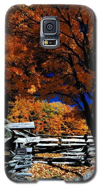 Autumn In Holderness Galaxy S5 Case