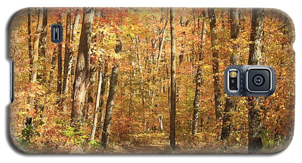 Galaxy S5 Case featuring the photograph Autumn In Minnesota by Penny Meyers