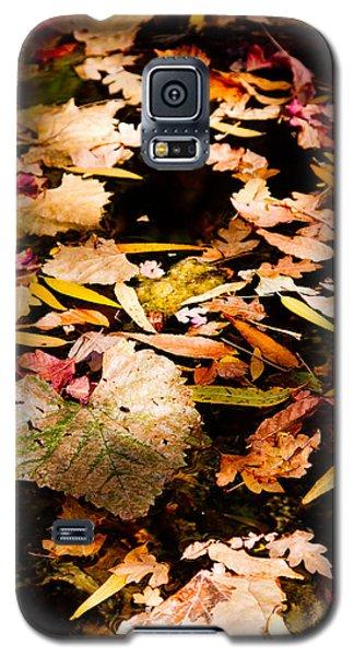 Autumn In Texas Galaxy S5 Case