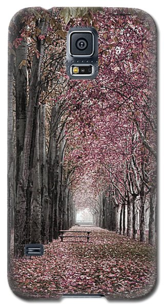 Autumn In The Grove Galaxy S5 Case