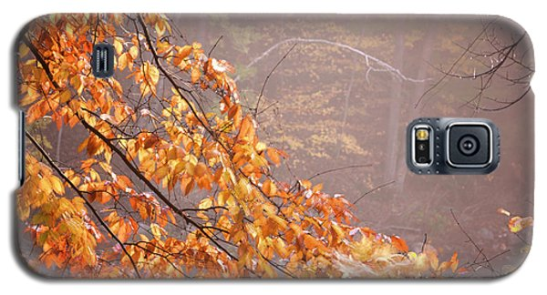 Galaxy S5 Case featuring the photograph Autumn Leaves And Fog by Tom Singleton