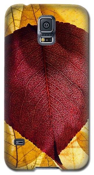Autumn Leaves II Galaxy S5 Case