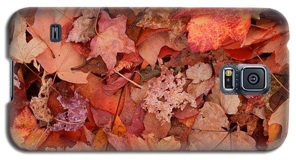 Galaxy S5 Case featuring the photograph Autumn Leaves by Karen Molenaar Terrell