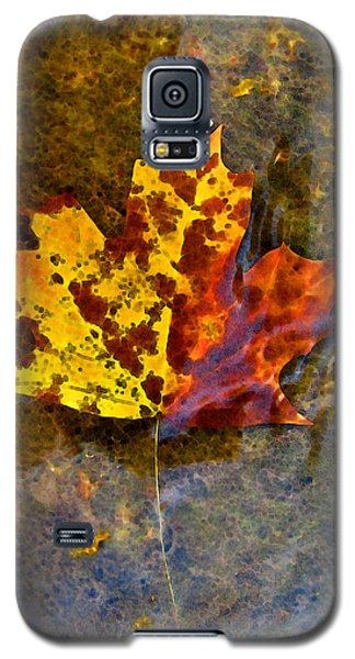 Galaxy S5 Case featuring the digital art Autumn Maple Leaf In Water by Debbie Portwood