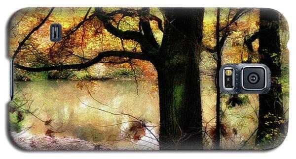 Autumn Oak Tree Galaxy S5 Case